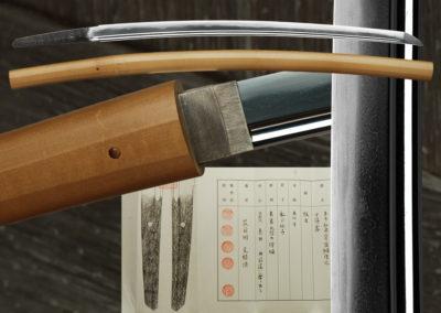 Chikuzen Moritsuna (fss-701)